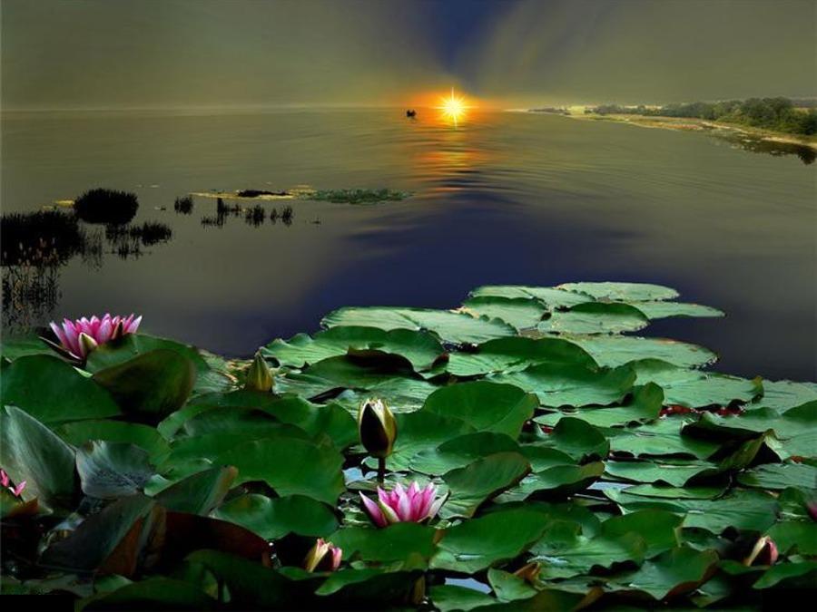 http://ic.pics.livejournal.com/tanjand/44781189/4204409/4204409_original.jpg
