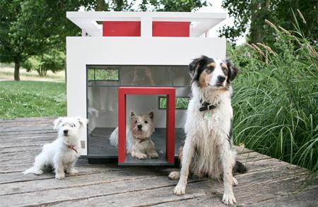 doghouse02