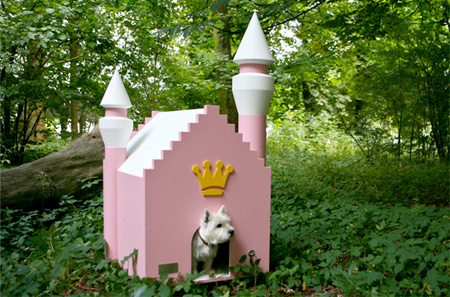 doghouse06