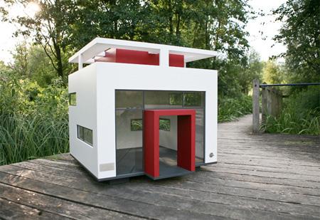 doghouse04