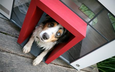 doghouse05
