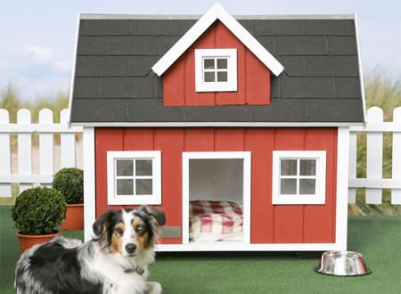 doghouse08