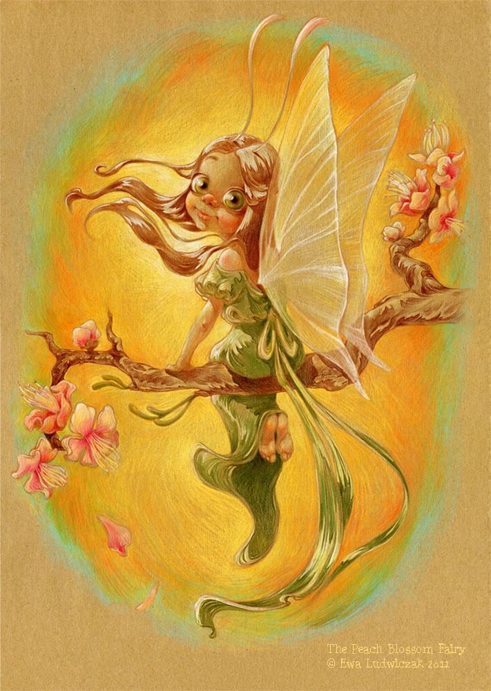 Ewa-Ludwiczak-the-peach-blossom-fairy