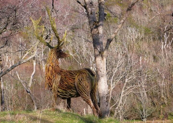 trevorleatlatest.blogspot calgary stag
