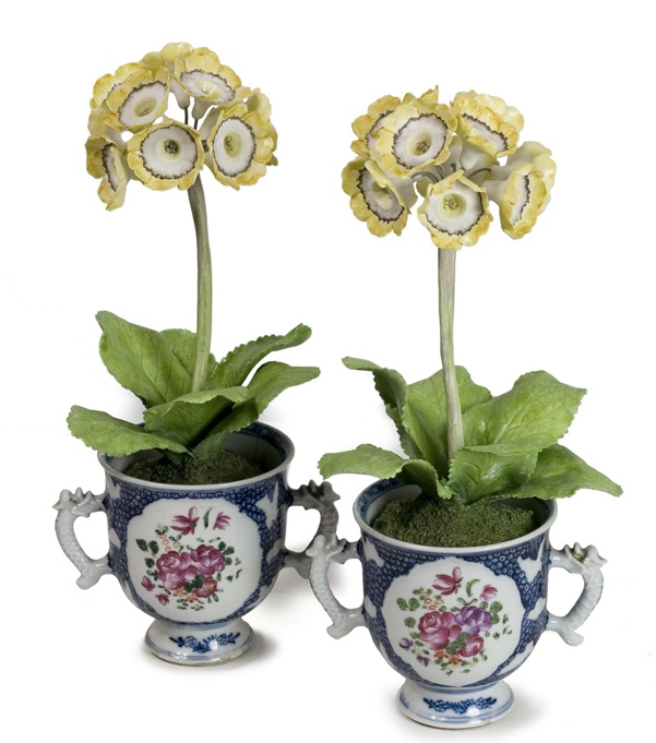 96213508_large_Auriculas_in_antiqueE__2_