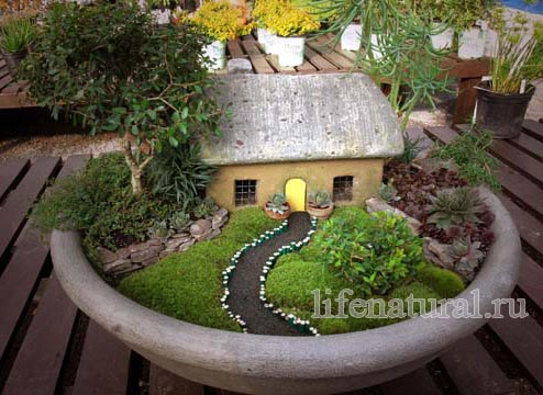 2009-03-miniature
