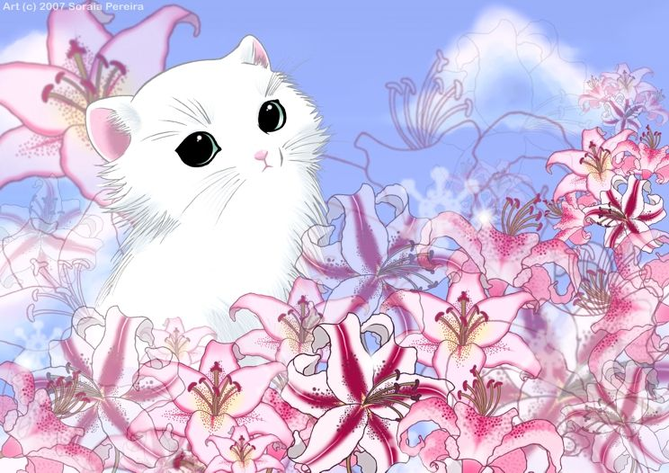 cats_22