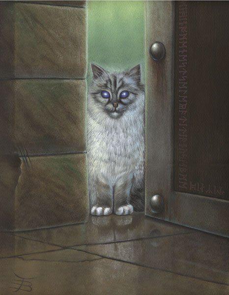 cats_76