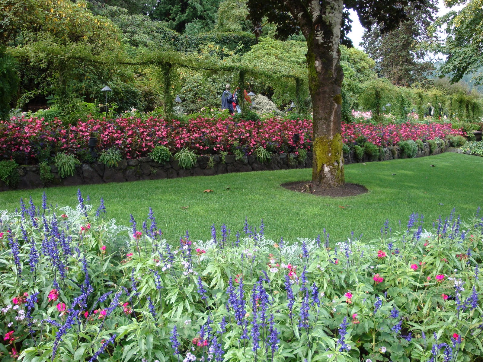 Butchart gardens discount coupons