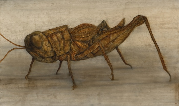 Grasshopper-II-57cmx104cm-web