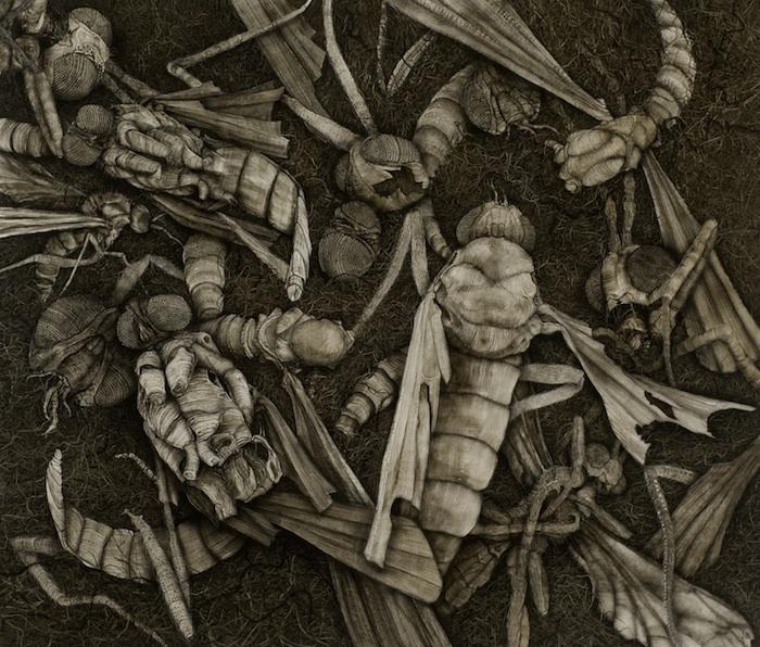 Insect-Garden-II-64cmx74cm-web