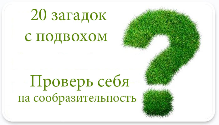 555960_514254565292325_2100634138_n