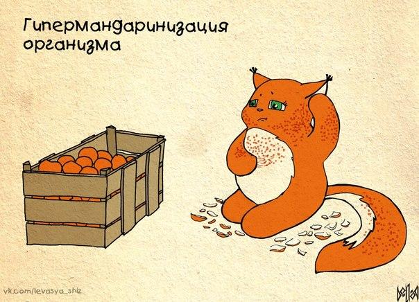 kroshka-krasivye-kartinki_651966172