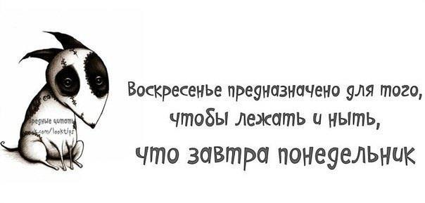 64881_517130228345750_1883804829_n
