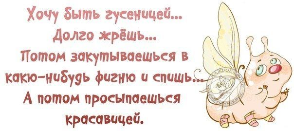 383047_520215388037234_1150575039_n