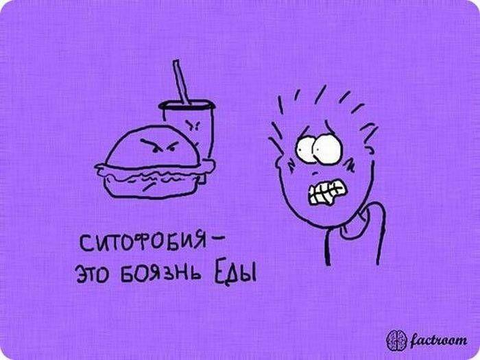 b_700_0_16777215_00_images_post_2013_05_13_zanimatelnye-fakty-v-kartinkakh-25-foto-11