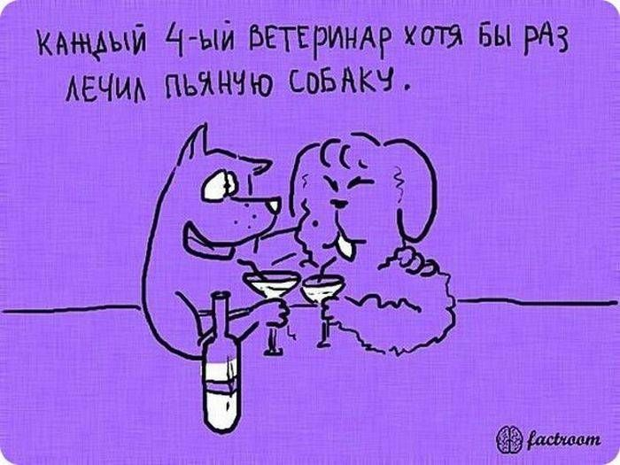 b_700_0_16777215_00_images_post_2013_05_13_zanimatelnye-fakty-v-kartinkakh-25-foto-12