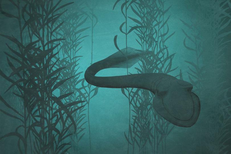 Грендландский кит (змеевидный хищник, огромной пастью хватал добычу размером с себя)