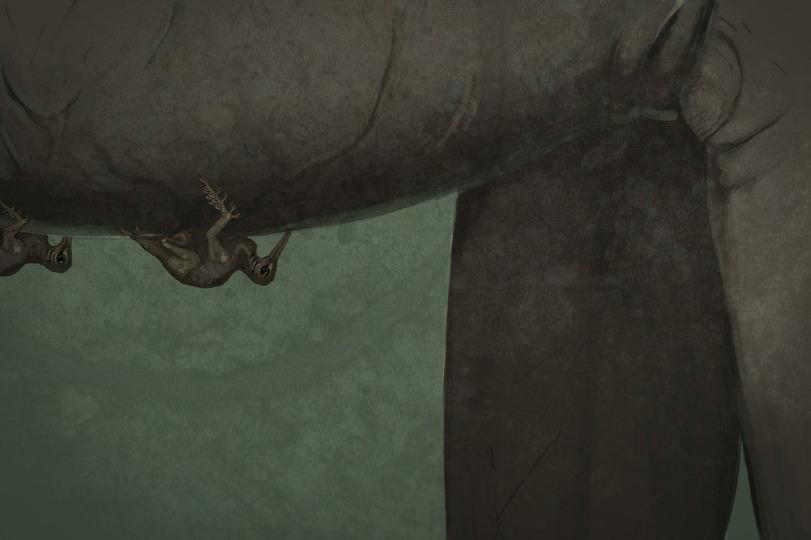 Калибри(кровососущие паразиты