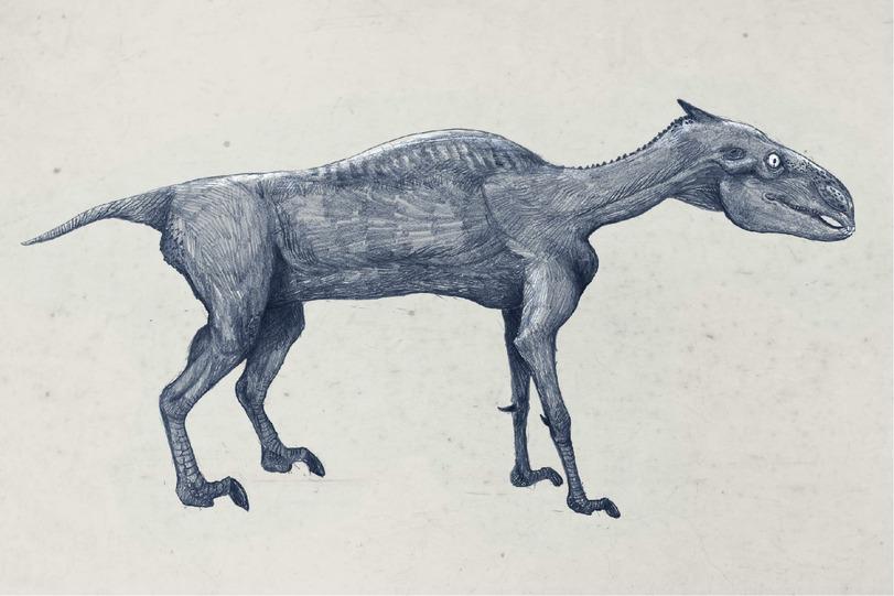 Лошадь(стопоходящая)