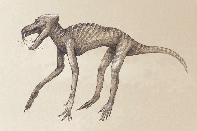 Павиан (хищник с ядовитыми зубами, как у змей