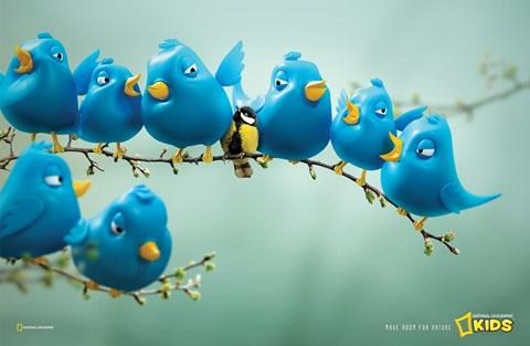 National Geographic детский журнал. Twitter Birds