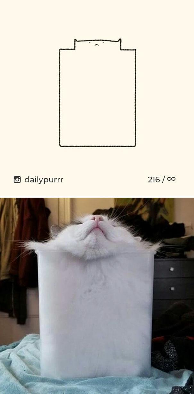 stupid-cat-drawings-dailypurrr-7-5af017a320f56__605.jpg