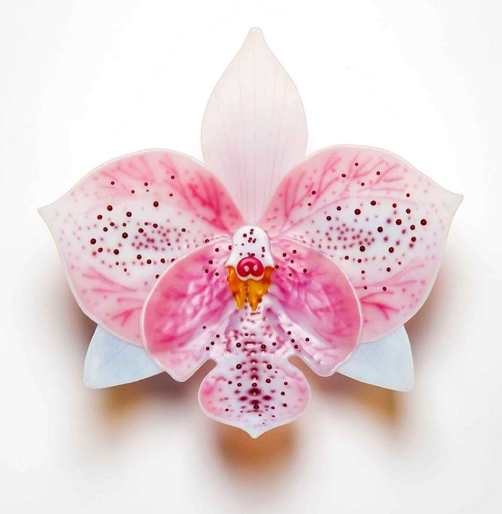 orchid-2.jpg