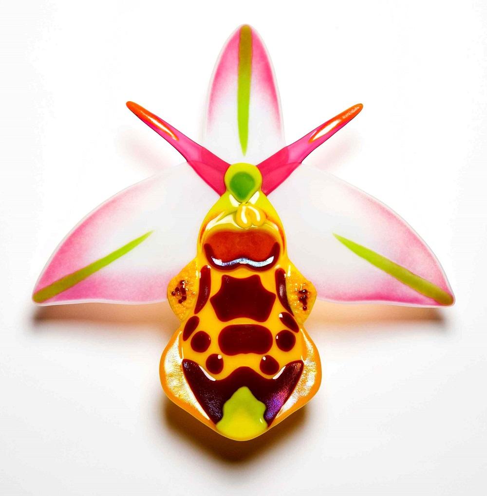 orchid-3.jpg
