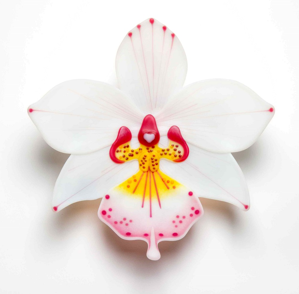 orchid-9.jpg