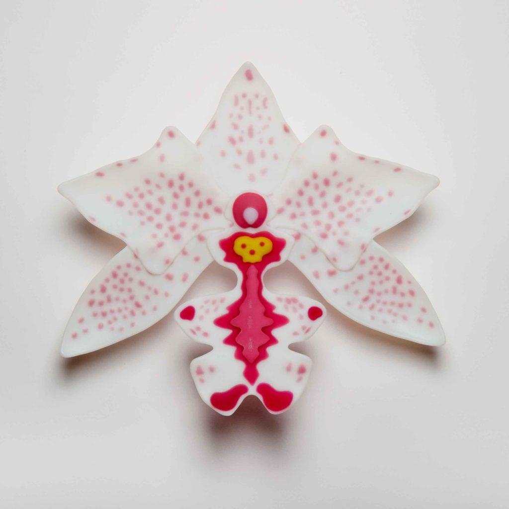 Pink-Odontoglossum-1024x1024.jpg