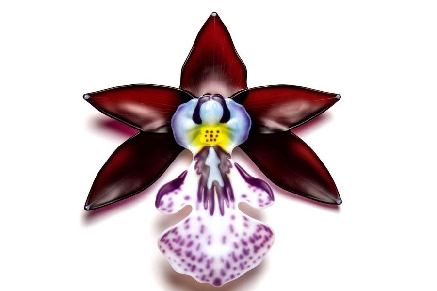Розовые орхидеи из стекла от Лауры Харт - экзотической красоты скульптуры