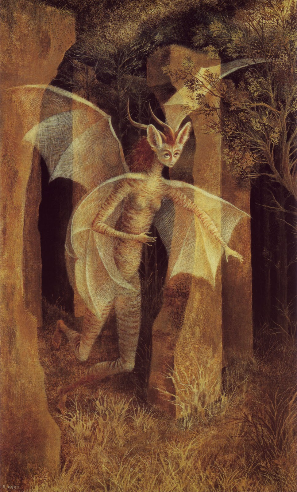 remedios-varo-wild-light-stunning-wildlife-graphy-bird-85825.jpg