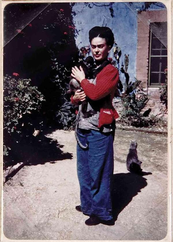 Кот Фриды Кало очень ревновал художницу к обезьянке.