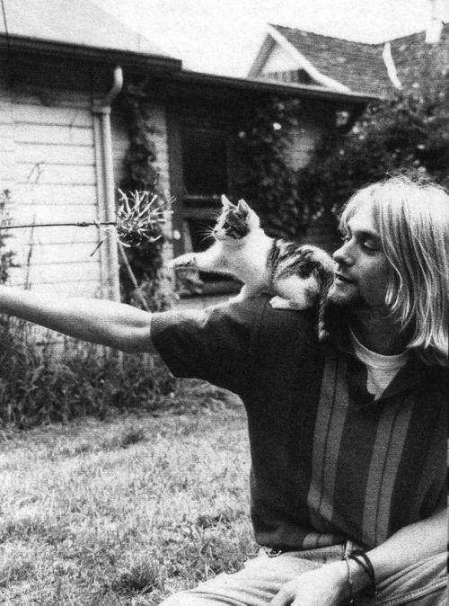 Курт Кобейн с котенком