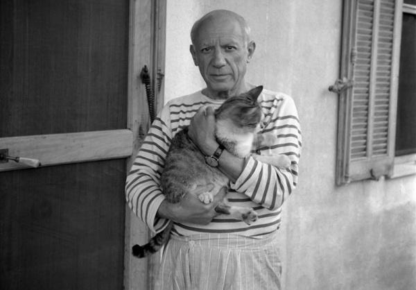 Пикассо и кот