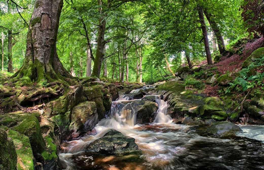 01 CLoghleagh Falls 270612