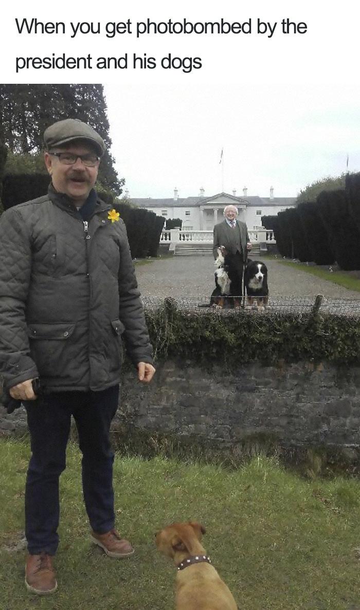 people-love-ireland-president-michael-higgins-8-5b471112d718c__700-5b4726f5ae162__700.jpg