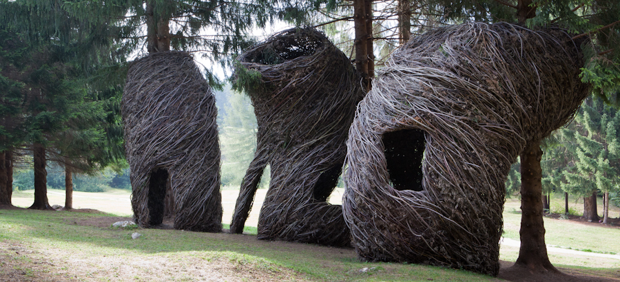 homepage _PatrickDoughrty