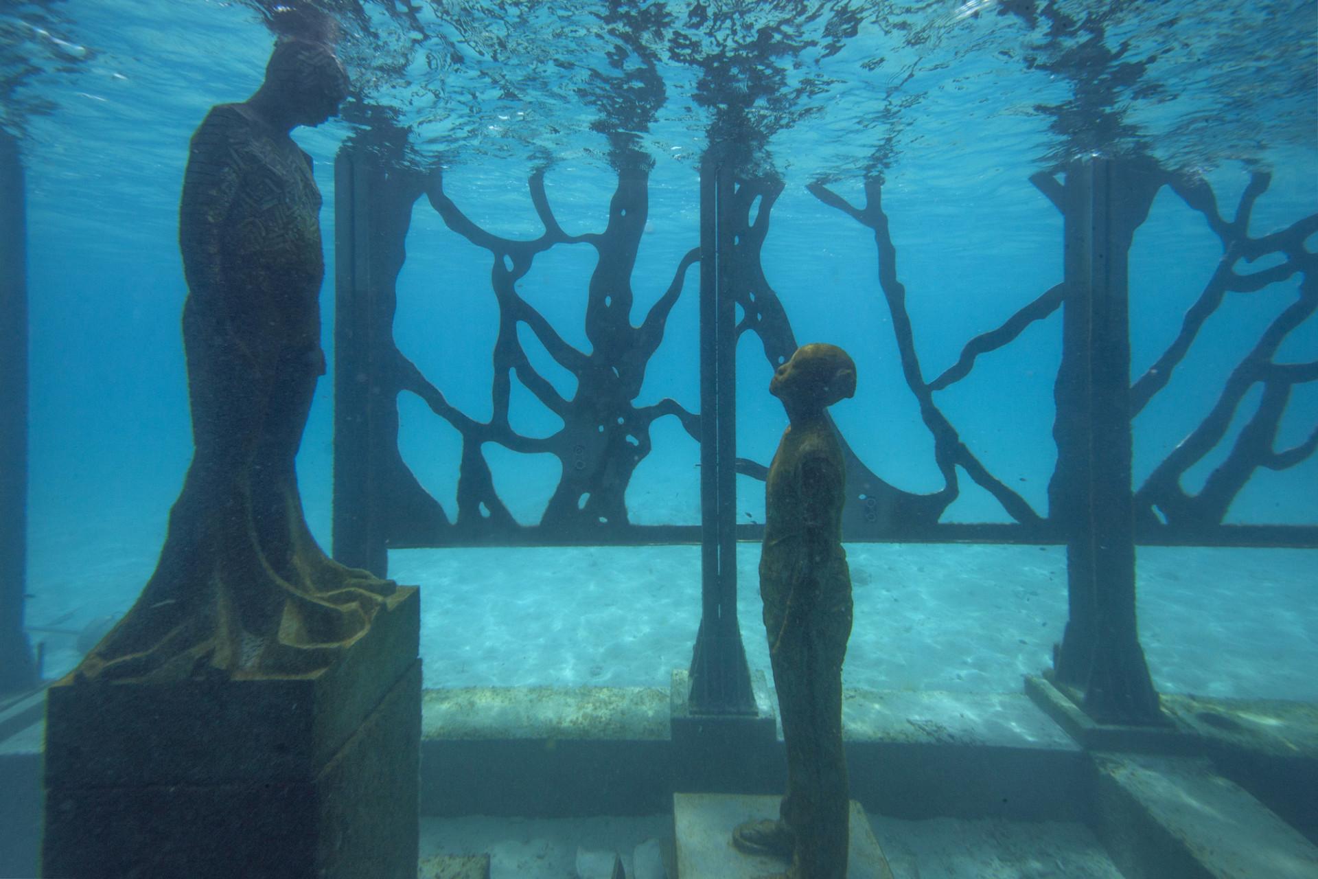 coralarium-2-960x640@2x.jpg