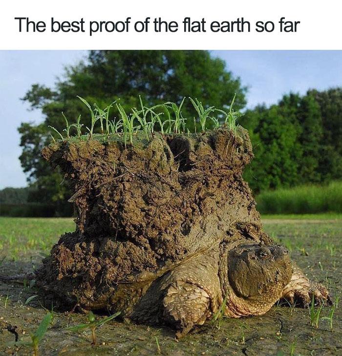 Flat-Earth-Funny-Memes14-5b3377b48c4ba__700.jpg
