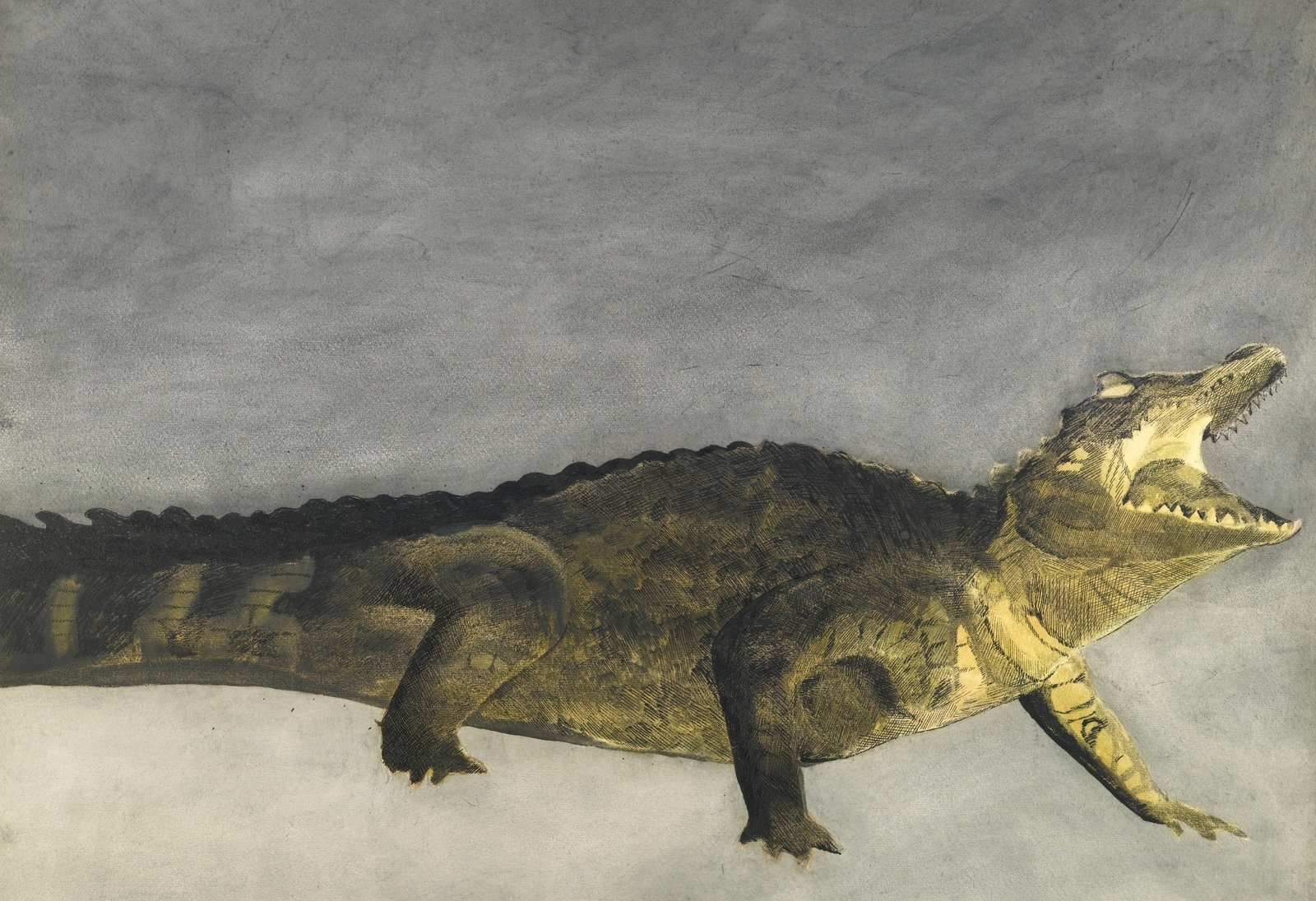1933_Крокодил на сером фоне (Crocodile sur fond gris)_55.5 х 76.6_бумага, акварель, карандаш, перо и тушь_Частное собрание.jpg