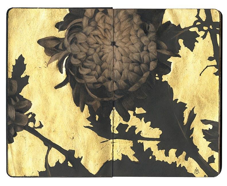 Alessandra_Maria-Chrysanthemum-VIII.jpg
