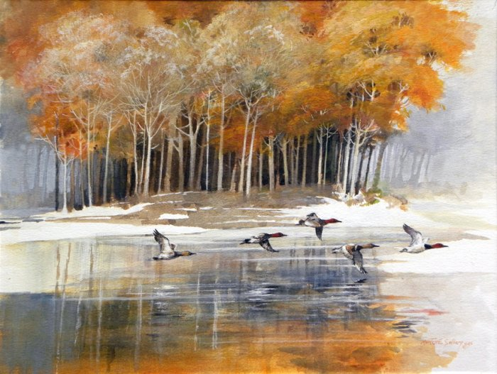duckisland