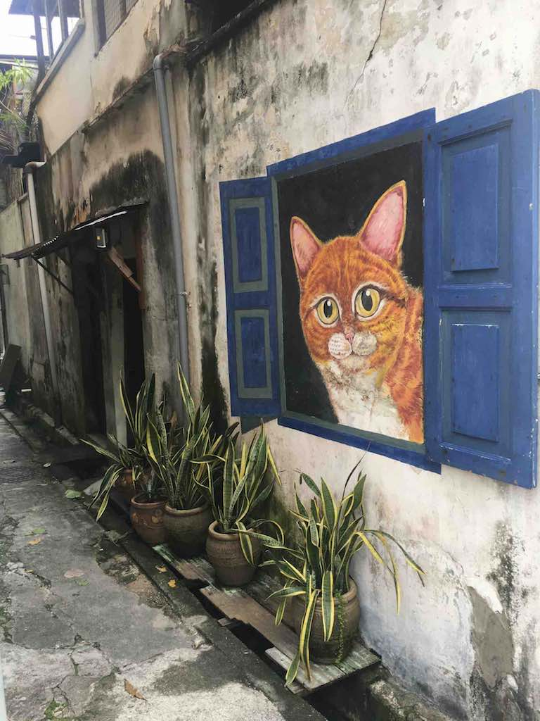 Cat-in-a-Blue-Window-mural.jpg