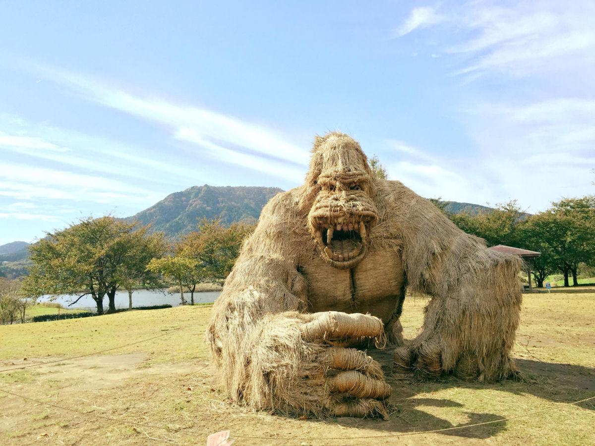festival_Wara_Niigata_2018_11.jpg