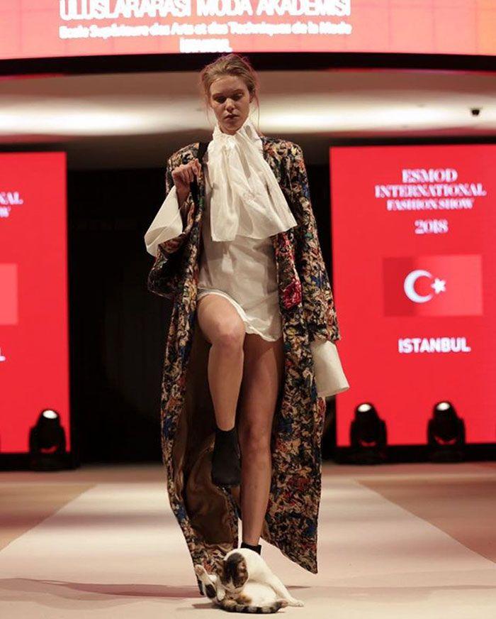 chat-errant-defile-mode-esmod-istanbul-turquie-003.jpg