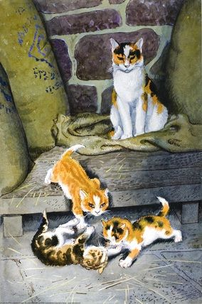 7a309a5e32be865302f5b170eb33a51d--cat-traps-cat-s.jpg
