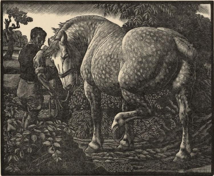 151217-ysgythriadau-ac-engrafiadau-charles-f-tunnicliffe.jpg
