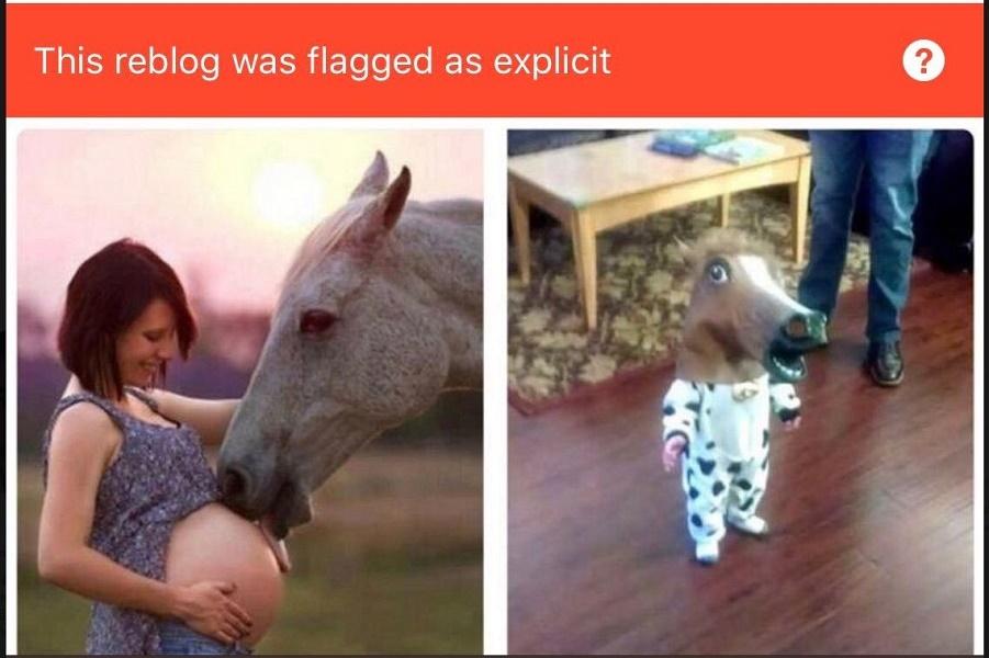 По стопам Фейсбука. Теперь Tumblr: новый фильтр «Найду я даже прыщик на теле у слона».